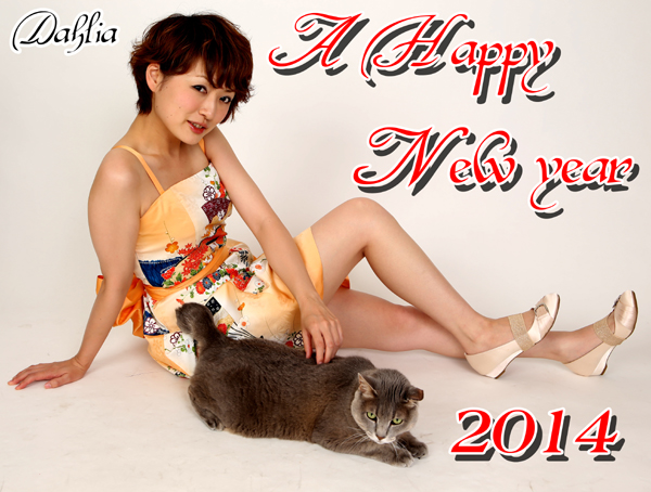 A Happy New Year 2014-kimono dress
